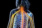 El agresivo tratamiento que destruye el sistema inmunológico pero puede curar la esclerosis múltiple