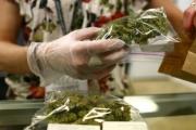 La marihuana como medicina